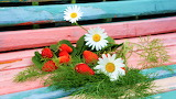 Daisies and strawberries on boards