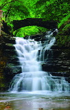 #Linn Street Falls Ithaca New York