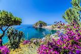 Italy Coast Bougainvillea Ischia Bay 542151 1280x853