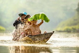 Children, river, boat, Vietnam, smile, boys, squirt, water, leaf