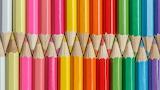 Colored pencils all in rows