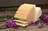 Libro e serenelle