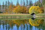Nature-lake-forest-autumn