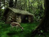 Old_house_in_the_woods_by_lex2010-d467edd