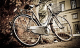 Old_bicycle