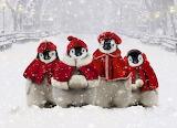 Merry Christmas @ Pinterest...