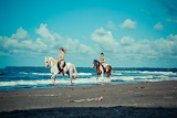 Horse riding in Majorca - riding on the beach