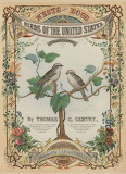 """Science tumblr cincylibrary """"Birds of the United States"""" 1882"""