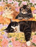 Garden Kitties