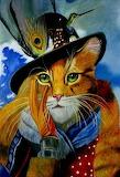 Flashy Cat