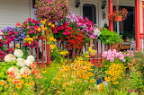 A Colorful Garden in Quebec