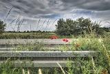 Flower on road rail along European highway