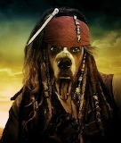 Pirate Captain Puppy Dog