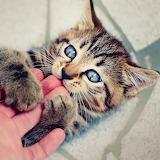 Love Biting...