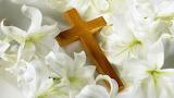 Cross-flowers-white
