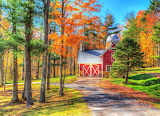 Barn-forest-trees-pathway-foliage-autumn-landscape