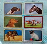 Swap Cards_dogs, kitten, horses