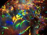Opal - Opalville Mine Queensland, Australia Fiery Opal