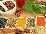 healthy food-spices