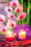 Orchids-Candles-Stones-Wallpaper-iPhone