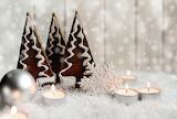 Christmas-4646421 1920