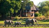 Zambia-safari-lodges