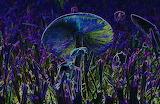Magical Mushroom-David Lee Thompson (2)