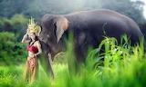 Girl, elephant, Asian, nature, headdress