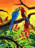 Macaws in love - Laura Wegkamp