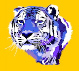 For Skilled Puzzlers Big cats Tigers Vector 456978