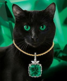 cat with green necklace