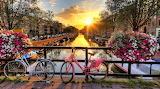 Amsterdam 2.........................x