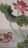 Fleurs des jardins de Chine et d'Europe par Buch oz 10856 (4)