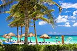 Coastal Tropical Beach in the Caribbean