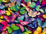^ Butterflies A Million