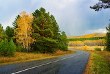 Autumn Road - Photo id-218127 Pixabay by Larisa Koshkina