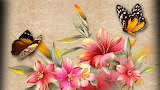 Hibiscus and Butterflies