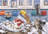 Kitty Litter - Keith Stapleton