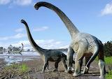 01-Savannasaurus-elliottorum-australia