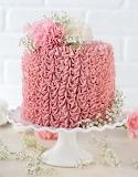 Gorgeous raspberry chocolate cake