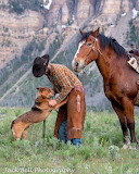 Man, a horse and a dog