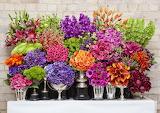 ^ Colorful flower display