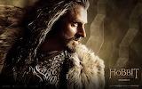 The Hobbit - Desolation of Smaug - Thorin