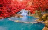Corner of wonderful nature