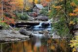 Tardor - Autumn