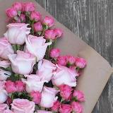 Flowers 14 jpg