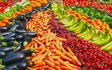 abundance agriculture