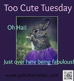 Fabulous Baby Bunny