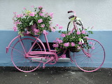 Bicycle-flower-planter-3