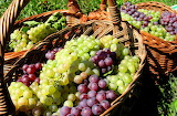 healthy food-grape